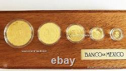 2013 Mexico Mexican Libertad 5 Coin Proof Gold Set Box & COA Banco de Mexico